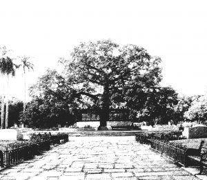 Parque de la Fraternidad de La Habana